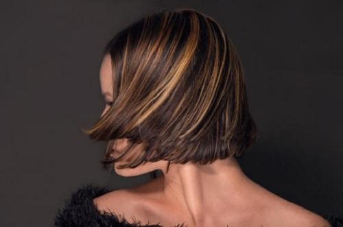 Dark Brown Hair with Highlights 2013
