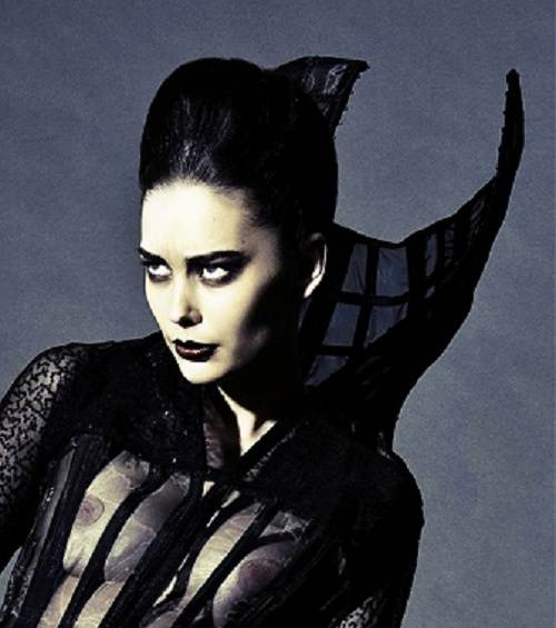 Gothic Updos Long Hair Concept