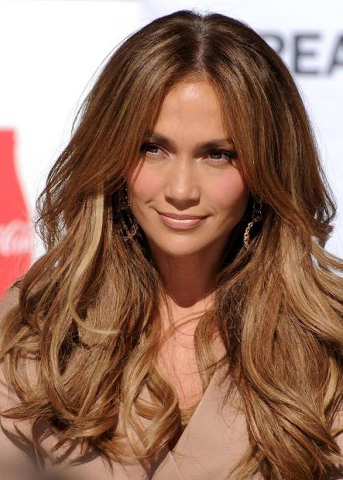 Light Highlights in Brown Hair Celebrity