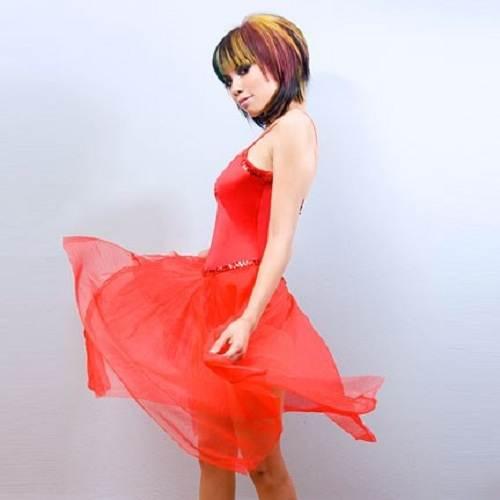 Ballerina Dresses for Women Chiffon