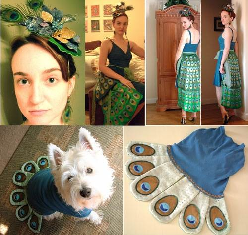 Peacock Fancy Dress Ideas Pictures