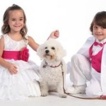 Girls Occasion Wear Dresses 2013