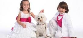 Girls Occasion Wear Dresses for Flower Girl
